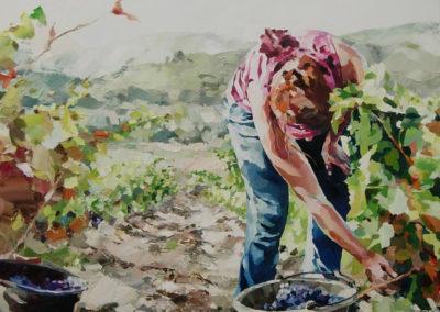 """""""Le vendange"""" (huile sur toile) - 100 x 100 cm (verkocht)"""